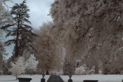 Winter-garden-400x800